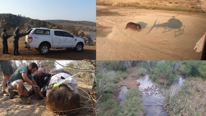 Ford Wildlife Foundation Vehicles Boost Life Sciences Research